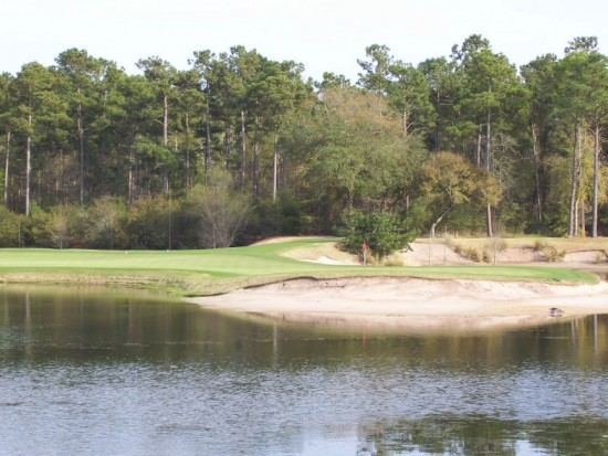 Watch Out For Gators At True Blue Golf Club